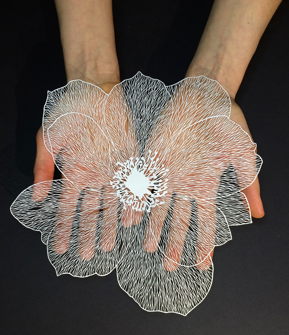 Beautiful And Delicate Cut Paper Flowers Visual Broadcast