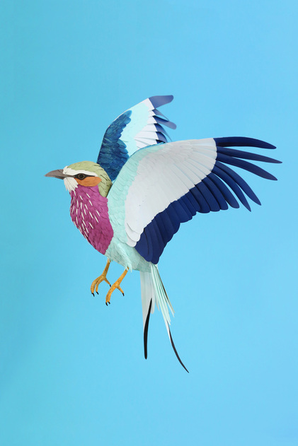 Diana Beltran Herrera Papercraft Bird