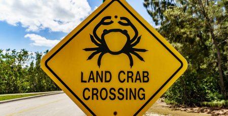 road-signs-header